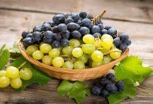 صورة 5 فوائد مذهلة تدفعك لإضافة العنب إلى نظامك الغذائى