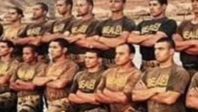 صورة قوةوعظمةالجيش المصرى