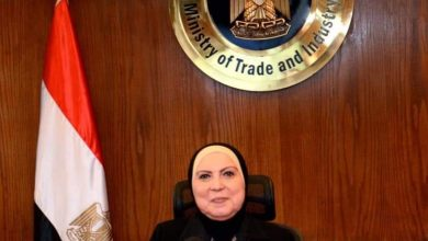 صورة وزيرة التجارة والصناعة تستعرض محاور وآليات البرنامج الجديد لرد اعباء الصادرات